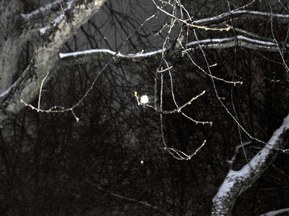 Moonset3_1